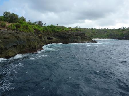 インドネシア遠征