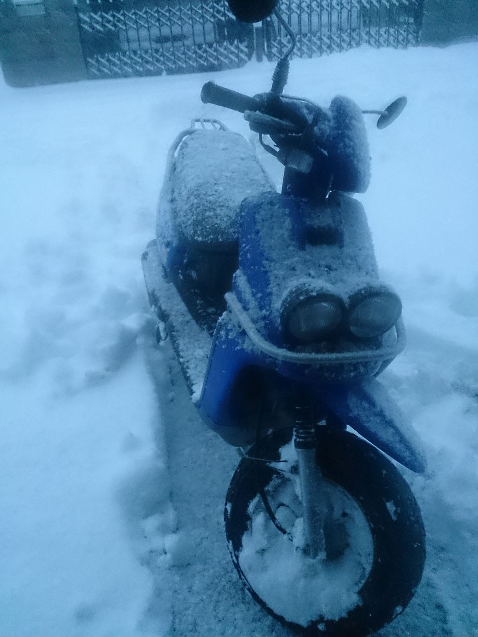 雪BW'S